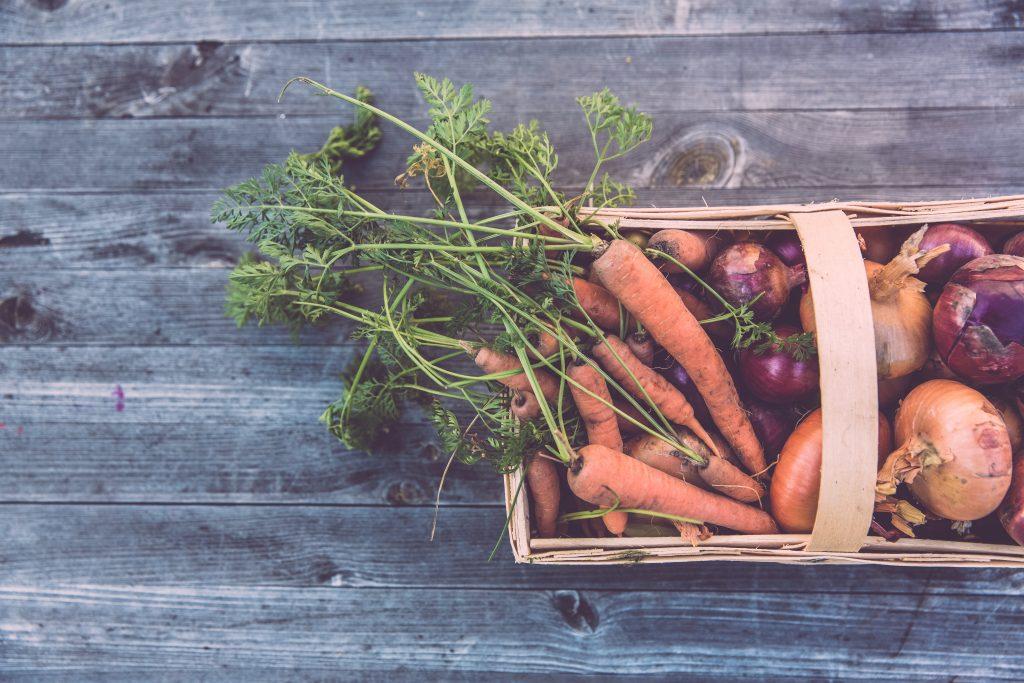 bonnes raisons d'avoir un compost