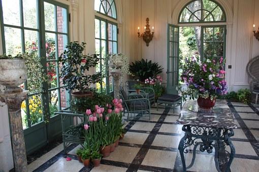 créer son propre jardin d'intérieur